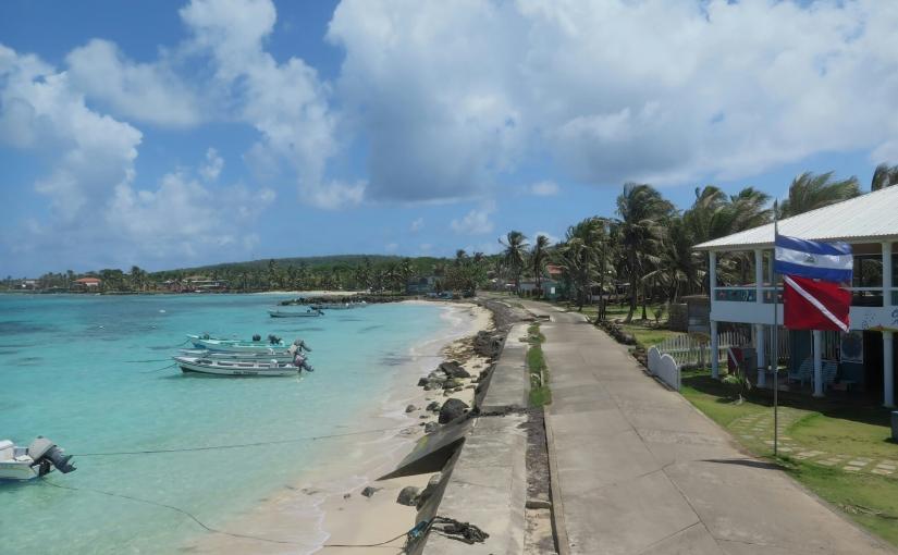 Carribean Dreams
